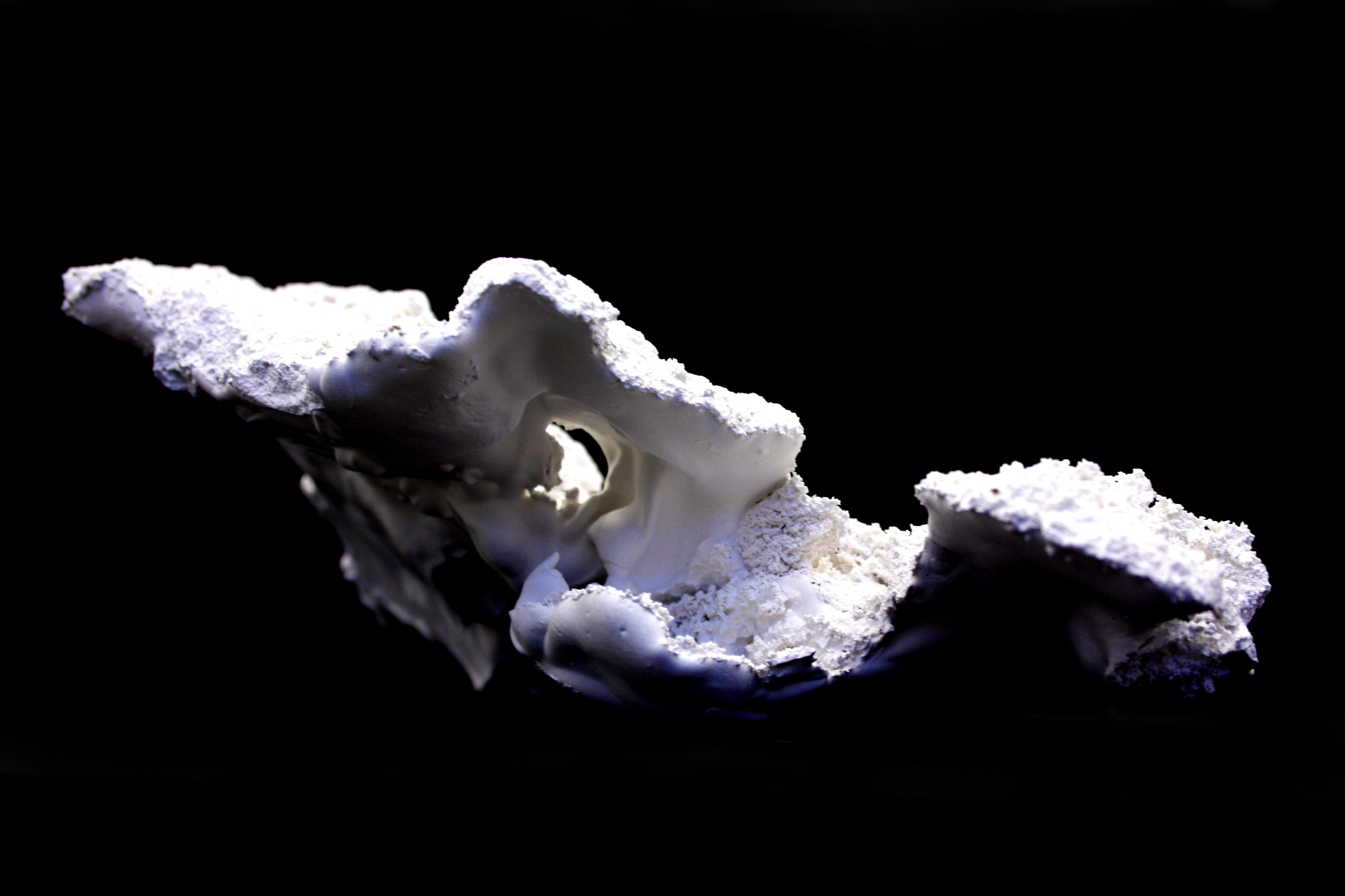 Schneeabguss I